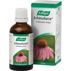 ECHINAFORCE GOTAS 100ml.